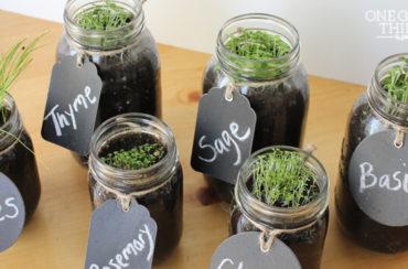 window sill herb garden