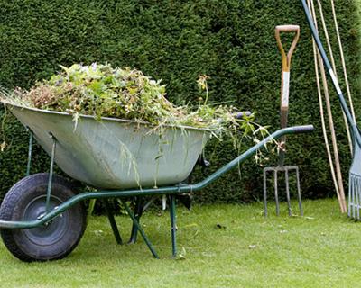 Fall Gardening