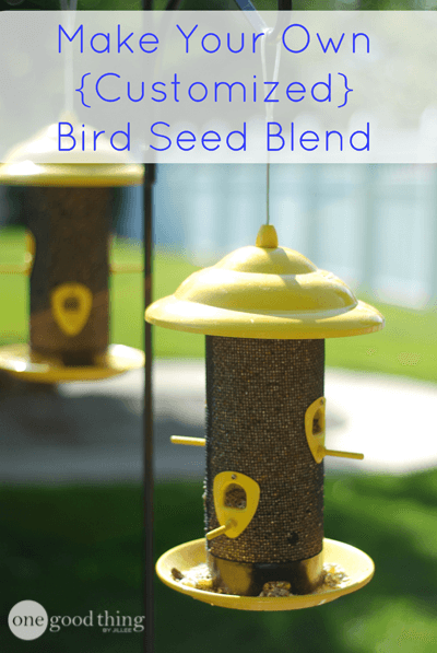 How to Make Your Own Bird Seed