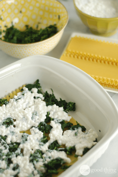 Quick and Easy Vegetarian Lasagna