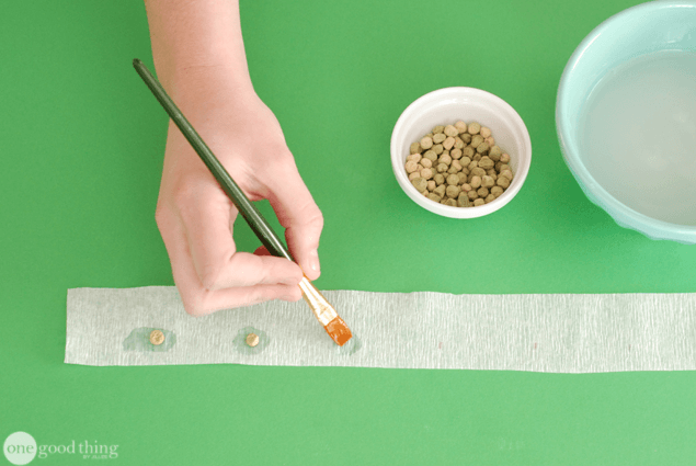 How to Make Seed Tape for Easy Spring Planting