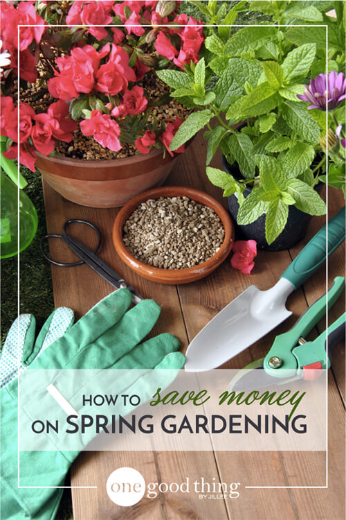 saving money gardening