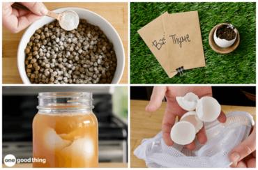 Surprising Uses For Eggshells