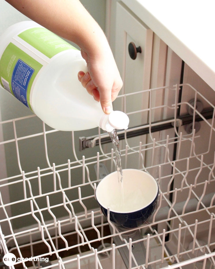 How To Clean A Dishwasher In 3 Steps Updated 2021